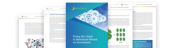 Data ROI in the Cloud Landing.jpg